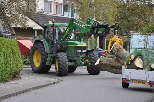 Boomkap - Boomkapbedrijf de Winter - Groningen - Bomen Kappen - Bomen Rooien